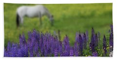 I Dreamed A Horse Among Lupine Hand Towel