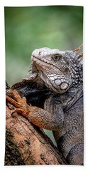 Iguana's Portrait Bath Towel