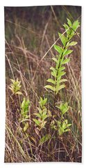 Hand Towel featuring the photograph In Tall Grass by Whitney Goodey