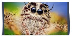 Jumping Spider Colonus Hesperus Hand Towel