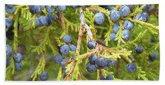 Juniper Berries Hand Towel