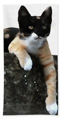 Just Chillin Tricolor Cat Hand Towel