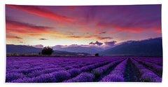 Lavender Season Hand Towel
