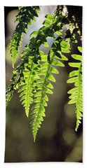 Hand Towel featuring the photograph Licorice Fern by Whitney Goodey