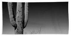 Lone Saguaro Square Hand Towel