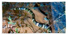 Bath Towel featuring the photograph Longnosed Snake By A Desert Wash by Judy Kennedy