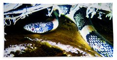 Bath Towel featuring the photograph Longnosed Snake In The Desert by Judy Kennedy