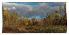 Maine Wilderness Color 2 Hand Towel