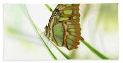 Malachites Butterfly Hand Towel