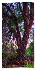 Bath Towel featuring the photograph Mesquite By The Wash by Judy Kennedy