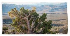 Mesquite In Nevada Desert Hand Towel