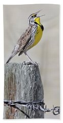 Montana Meadowlark's Spring Song Bath Towel
