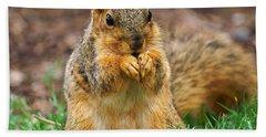 Munching Cute Fox Squirrel Hand Towel
