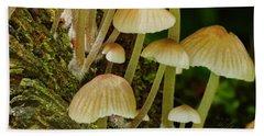 Mushrooms Hand Towel