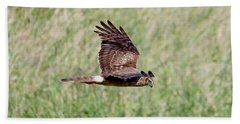 Northern Harrier Fly By Bath Towel