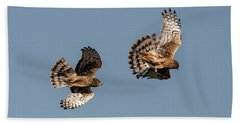 Northern Harriers 7 Hand Towel