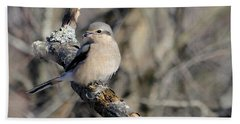 Northern Shrike Bath Towel