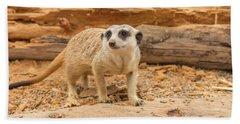 One Meerkat Looking Around. Hand Towel