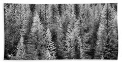 One Of Many Alp Trees Hand Towel