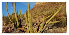 Organ Pipe Cactus, Ajo Mts, Organ Pipe Bath Towel