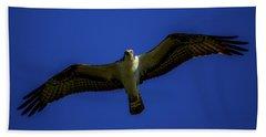Osprey Glide In Blue Hand Towel