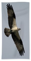 Osprey With Fish Hand Towel