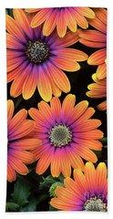 Osteospermum Purple Sun Flower Pattern Bath Towel