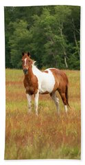 Paint Horse In Pasture Hand Towel