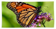 Perfect Monarch Hand Towel