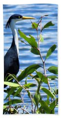 Pied Heron Tree Hand Towel