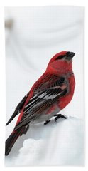 Bath Towel featuring the photograph Pine Grosbeak In The Snow by Susan Rissi Tregoning