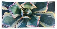 Pinwheel Succulent Hand Towel