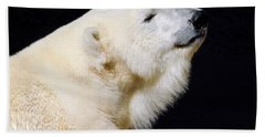 Bath Towel featuring the photograph Polar Bear by Dan Miller