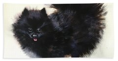Pomeranian Dog 6 Hand Towel