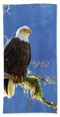 Portrait Of A Backlit Bald Eagle In Squamish Hand Towel
