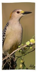 Portrait Of A Golden-fronted Woodpecker Bath Towel