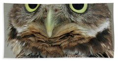 Portrait Of Burrowing Owl Hand Towel