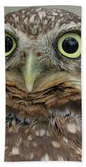 Portrait Of Burrowing Owl Bath Towel
