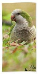 Quaker Parrot #3 Bath Towel