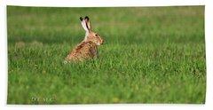 Rabbit Chews Hand Towel