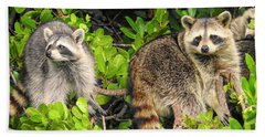 Raccoons In The Mangroves Hand Towel
