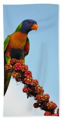 Rainbow Lorikeet Umbrella Tree Flowers Hand Towel