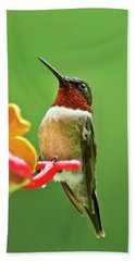 Rainy Day Hummingbird Bath Towel