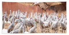 Ready Or Not, Here I Come -- Sandhill Cranes Hand Towel