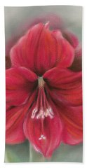 Red Amaryllis Hand Towel