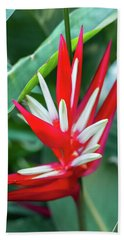 Red And White Birds Of Paradise Bath Towel