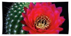 Red Hot Torch Cactus  Bath Towel