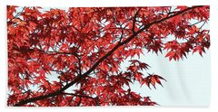 Bath Towel featuring the photograph Red Japanese Maple Leaves by Debi Dalio
