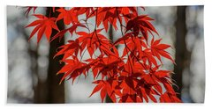 Bath Towel featuring the photograph Red Leaves by Cindy Lark Hartman
