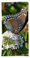 Red-spotted Purple On White Butterfly Bush Bath Towel
